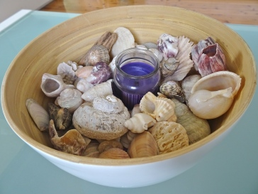 Candle Shell Bowl